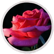 Round Beach Towel featuring the photograph A Rose Is A Rose by David Andersen