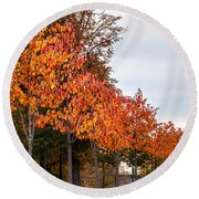 A Row Of Autumn Trees Round Beach Towel