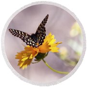 A Sip Of Coreopsis Round Beach Towel