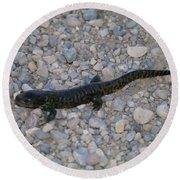 A Slow Salamander  Round Beach Towel
