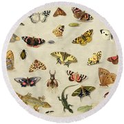 A Study Of Insects Round Beach Towel by Jan Van Kessel