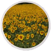 A Sunflower Field In Provence Round Beach Towel