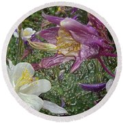 a taste of dew i do and PCC  garden too     GARDEN IN SPRING MAJOR Round Beach Towel