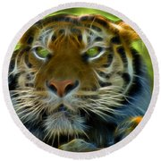 A Tiger's Stare II Round Beach Towel