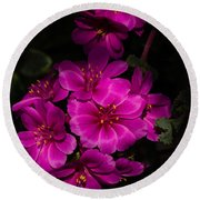 A Vibrant Succulent Bouquet In Pink And Fuchsia Round Beach Towel