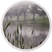 A View In The Mist Round Beach Towel