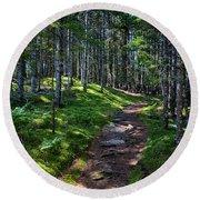 A Walk In The Woods Round Beach Towel by John Haldane