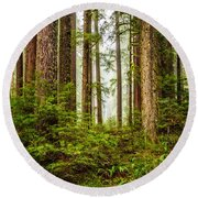 A Walk Inthe Forest Round Beach Towel