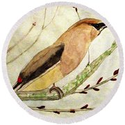 A Waxwing In The Orchard Round Beach Towel