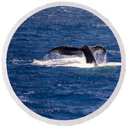 A Whale Of A Tail Round Beach Towel