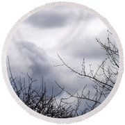 Round Beach Towel featuring the photograph A Winter's Day by Robyn King