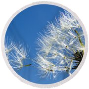 About To Leave - Dandelion Seeds Round Beach Towel
