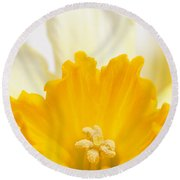 Abstract Daffodil Round Beach Towel