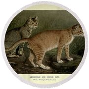 Abyssinian And Indian Cats Round Beach Towel