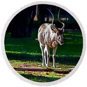 Addax Round Beach Towel