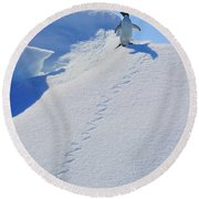 Adelie Penguin On Bergie Bit Round Beach Towel