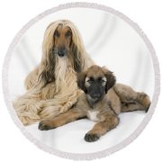 Afghan Hound And Puppy Dog Round Beach Towel
