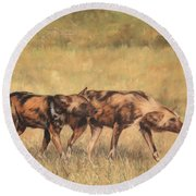 Africa Wild Dogs Round Beach Towel by David Stribbling
