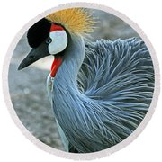African Crane Round Beach Towel by Larry Nieland