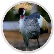 African Crowned Crane Running Round Beach Towel