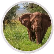 African Desert Elephant Round Beach Towel