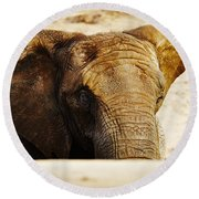 African Elephant Behind A Hill Round Beach Towel