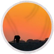 Round Beach Towel featuring the photograph African Elephant Sunset by Amanda Stadther