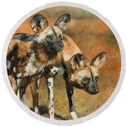 African Wild Dogs Round Beach Towel by David Stribbling