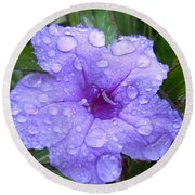 Round Beach Towel featuring the photograph After The Rain #1 by Robert ONeil