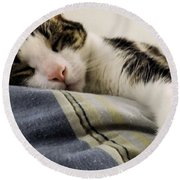 Round Beach Towel featuring the photograph Afternoon Nap by Robyn King