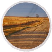 Afternoon Shadows Round Beach Towel by Mary Carol Story