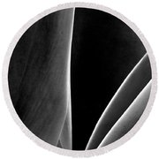 Agave Round Beach Towel by Ben and Raisa Gertsberg