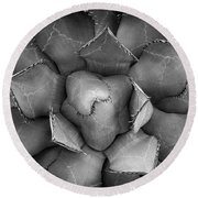 Agave Black And White Abstract Round Beach Towel