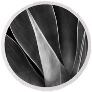 Agave No 3 Round Beach Towel