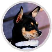 Agie - Chihuahua Pitbull Round Beach Towel