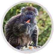 Alaotran Gentle Lemur Round Beach Towel