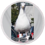 Albatross Round Beach Towel