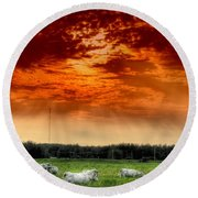 Round Beach Towel featuring the photograph Alberta Canada Cattle Herd Hdr Sky Clouds Forest by Paul Fearn