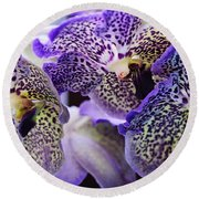 Aliens. Orchids From Keukenhof. Netherlands Round Beach Towel