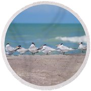 All In A Row Round Beach Towel