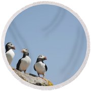 All Lined Up Round Beach Towel by Anne Gilbert