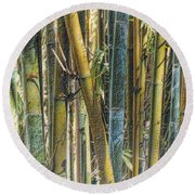 Round Beach Towel featuring the photograph All The Colors Of The Bamboo Rainbow by Nadalyn Larsen