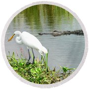 Alligator Egret And Shrimp Round Beach Towel