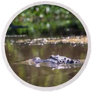 Alligator Swimming In Bayou 1 Round Beach Towel