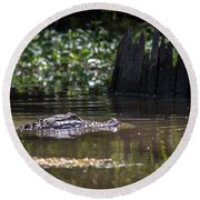 Alligator Swimming In Bayou 2 Round Beach Towel