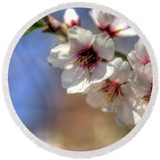 Round Beach Towel featuring the photograph Almond Blossoms by Jim and Emily Bush