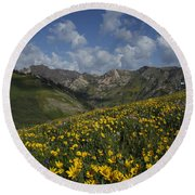 Alta Bloom Round Beach Towel