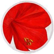 Amaryllis Flower Round Beach Towel