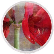 Amaryllis In The Rough Round Beach Towel