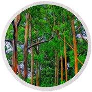 Amazing Rainbow Eucalyptus Round Beach Towel by DJ Florek